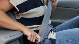 seatbelts road safety seatbelt law